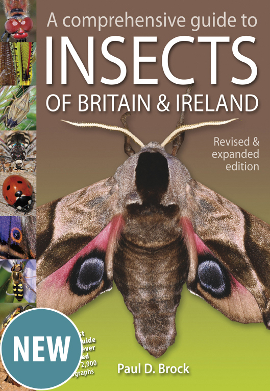 A Comprehensive Guide to Insects of Britain & Ireland new and revised edition