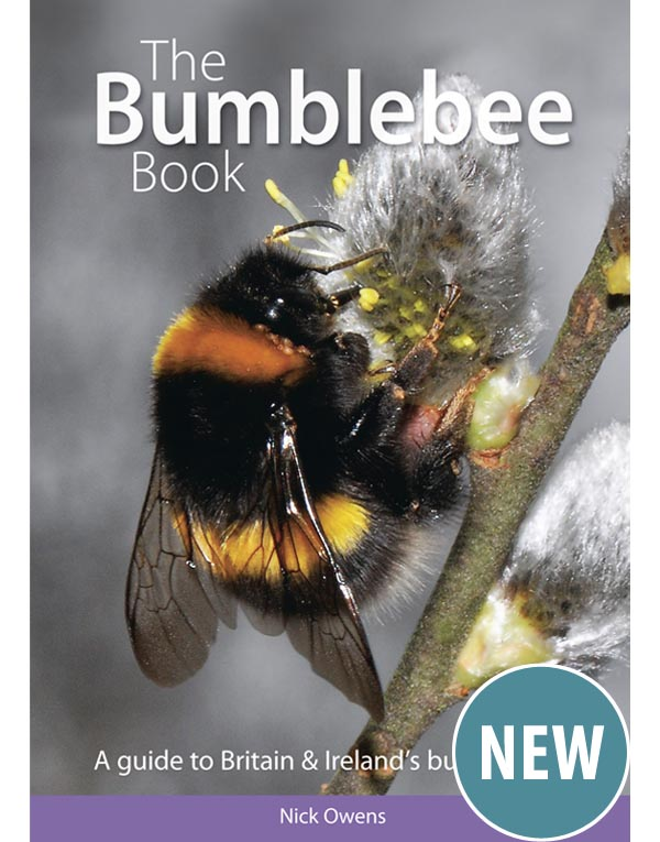 The Bumblebee Book