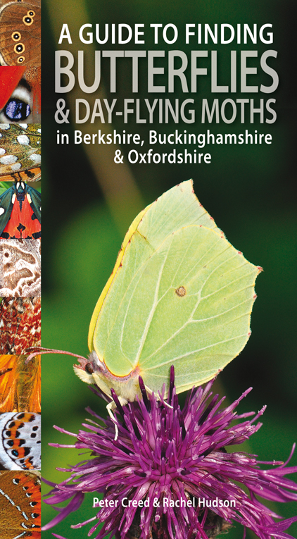 Guide to Finding Butterflies and Day-flying Moths in Berks, Bucks and Oxon