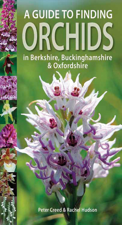Guide to Finding Orchids in Berks, Bucks and Oxon