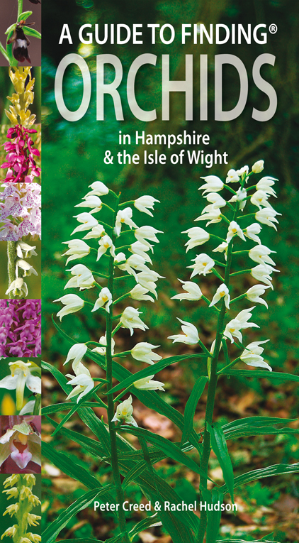Guide to Finding Orchids in Hampshire and the Isle of Wight
