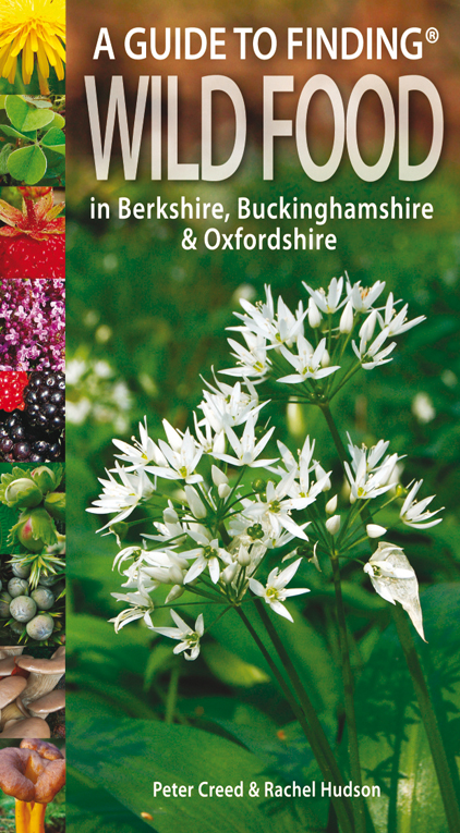 Guide to Finding Wild Food in Berks, Bucks and Oxon
