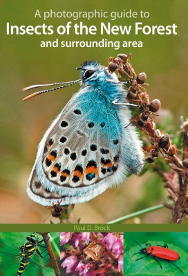 A Photographic Guide to Insects of the New Forest